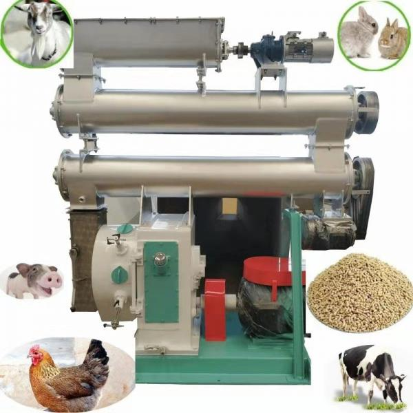 Homemade and automatic poultry feed pellet making machine #3 image